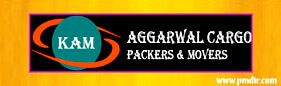 pmdir.com - Aggarwal Cargo Packers and  Movers Jammu