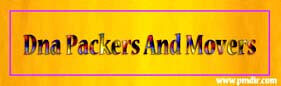 pmdir.com - DNA Packers and Movers Raipur