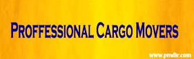 Proffessional Cargo Movers Thrissur